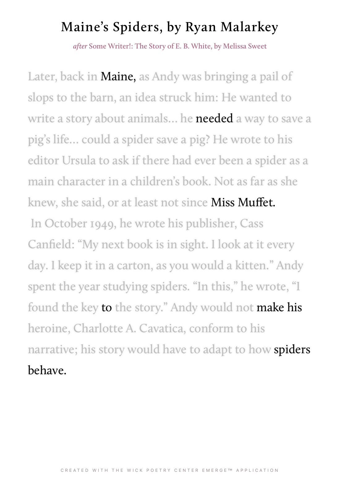 Maine's Spiders